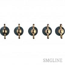 SMEG 5MP800A